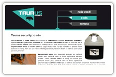Taurus security